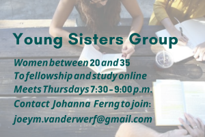 Young Sisters Group